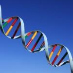 Preimplantasyon Genetik Tanı (PGT)= İmplantasyon Öncesi Genetik Tanı